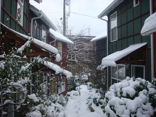 townhouse-snowed-in